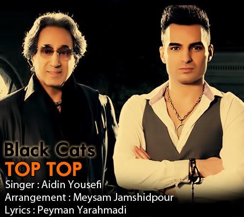 Aydin Black Cats   Top Top